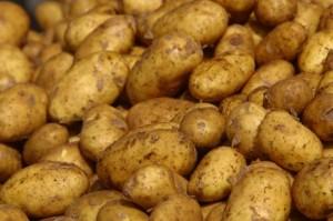 Хрустящая фаршированная картошка с ветчиной и сыром