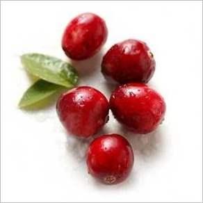 Клюквенный сок эффективен при лечении цистита