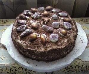 Торт Морские ракушки